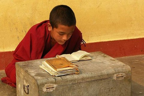 3838774-Young-Monk-Studying-0